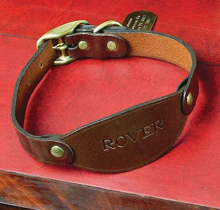 Dog collar no 2
