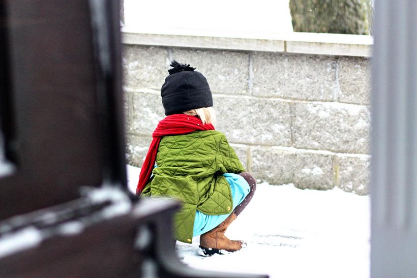morgan in snow